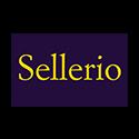 SELLERIO EDITORE